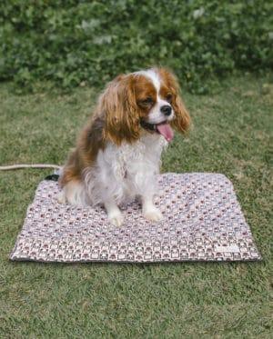 Colchonete para cachorros Passeio Conforto – Patinhas