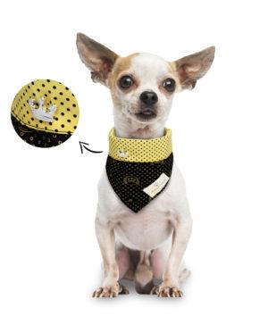 Bandana para cachorros Dupla Face – Preta e Amarela Coroa