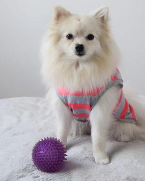 Roupa para cachorros Regata Listras – Rosa