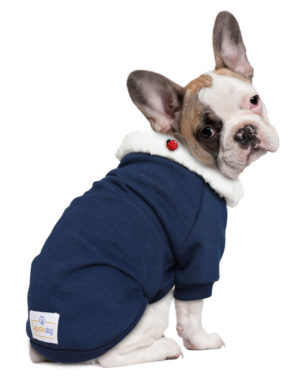 Roupa Moletom para cachorros azul gola carneirinho – Joaninha