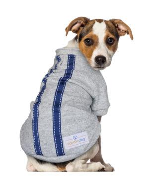 Roupa Moletom para cachorros cinza com fita azul