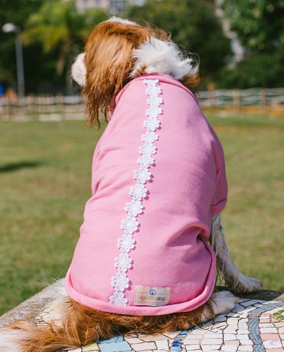 Moletom para cachorro rosa com renda
