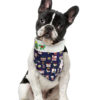 Foto de cachorro Bandana para cachorro de natal